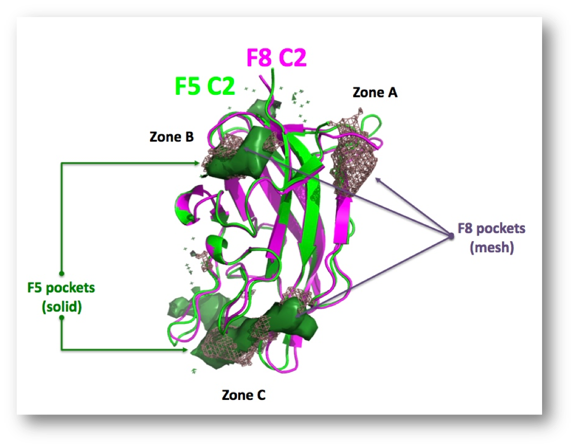 Structural Bioinformatics: molecular modeling &